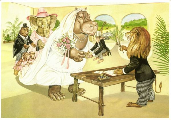 Hippo Hippopotamus Bride marries small Monkey, Lion, Elephant, Bear (1995)