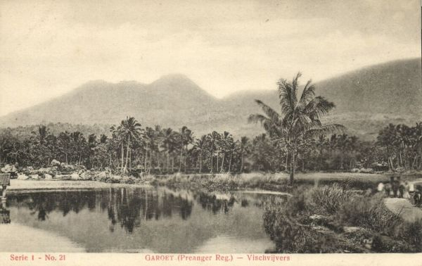 samoa, SAVAI'I, Lava running into the Sea (1909) Stamp
