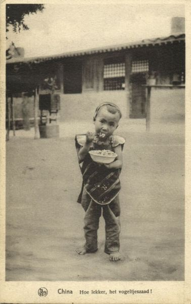 china, How tasty, the Birdseed (1920s) Mission Van Scheut (Dutch Text)